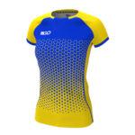 жовто-синій