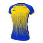 синьо-жовтий